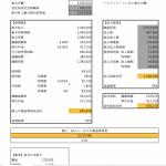 Excelはお客様独自の要望に応えられる必須のツール。会計・税務ソフトだけで仕事を回すのは難しい